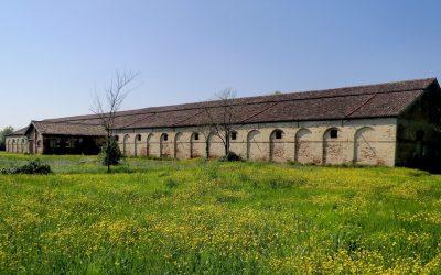Breve storia della Vigna Murada: il Lazzaretto Novo