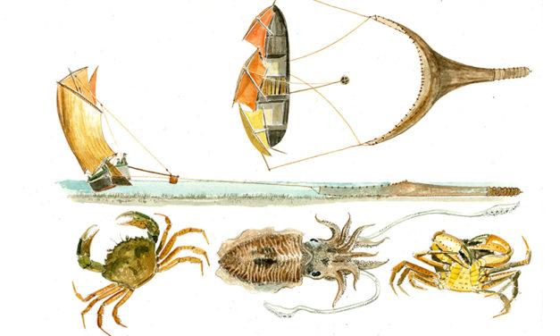 Incontro con Luigi Divari i suoi pesci e le sue barche