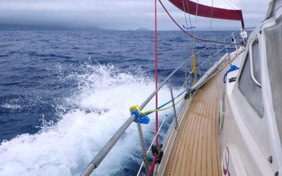 Carte nautiche e carteggio